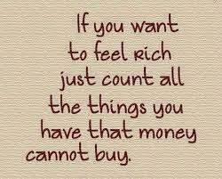 Rijk leven